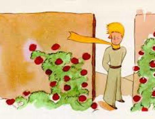 داستان شاهزاده کوچولو (part 26)